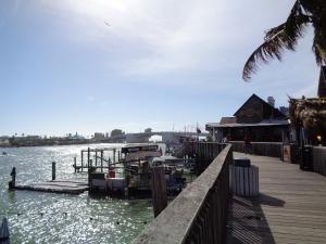 Florida New Years 2016 014